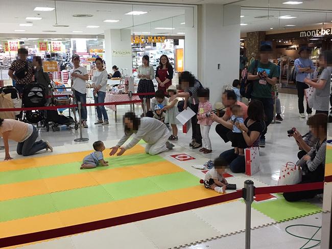 イトーヨーカドー奈良店「赤ちゃんハイハイレース」